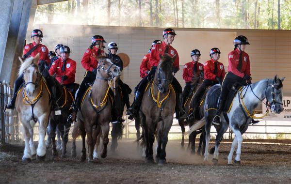 A&O Mounted Patrol Training
